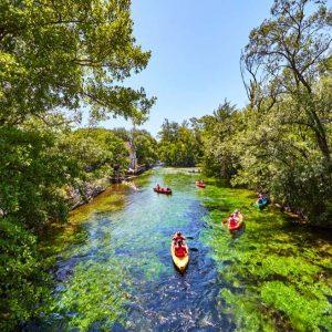 Kayaking the Sorgue